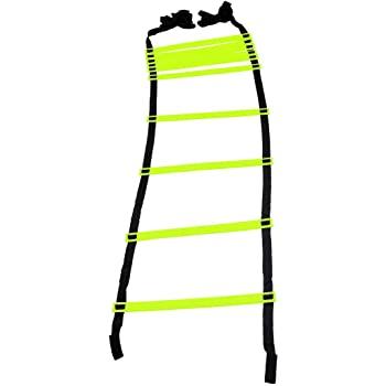 Exercise Ladder